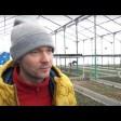Андрей Безладный: «Выращивать цветы – это каторжный труд»