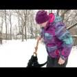 Как правильно гулять с собакой?