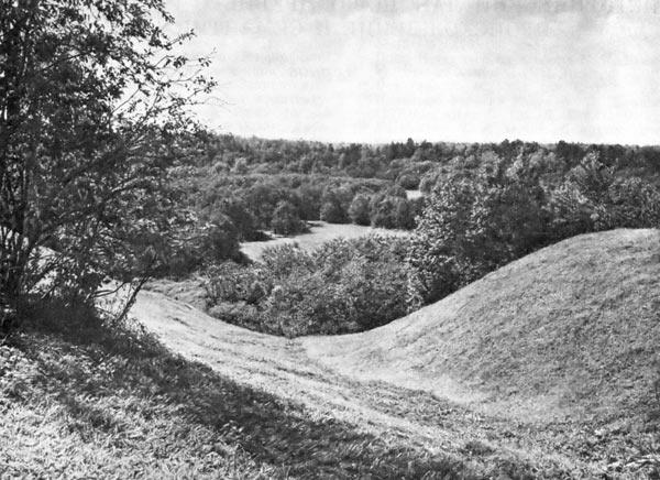 Вид от посада Радонежа на долину р. Пажи