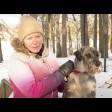 Группа «Элита-спорт»: дрессировка собак с удовольствием
