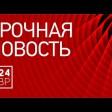 Площадь пожара в СНТ под Сергиевым Посадом составила 130 кв. метров