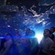 В преддверии Дня Космонавтики впарк «Скитские пруды»приезжает мобильный планетарий