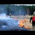 Противопожарный режим действует в Сергиево-Посадском округе с 1 мая
