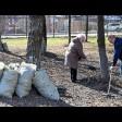 Куда обращаться сергиевопосадцам, чтобы вывезли мусор после уборки во дворах многоквартирных домов