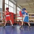 Почти 90 боксёров отметили День Победы на ринге