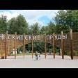 Михаил Токарев о развитии парка «Скитские пруды»