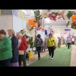 С 1 по 6 июня в Сергиевом Посаде на теннисных кортах работает выставка-продажа