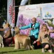Половина мировых пород собак — на выставке в Посаде