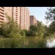 Программа «Формирование комфортной городской среды» реализуется в Сергиевом Посаде