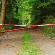 В Подмосковье до 19 июля закрыли въезд в леса из-за опасности пожаров