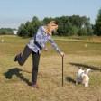 Спортивный лагерь для собак