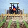 Объявлен конкурс по предоставлению грантов на развитие семейных ферм
