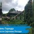 В Ильин день гроза повалила дерево на Ильинской