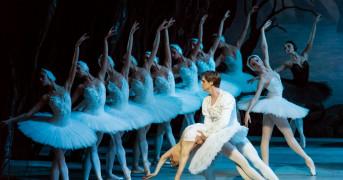 Всемирный день балета