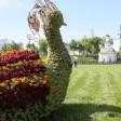 Цветочных лебедей на Блинной горе в Сергиевом Посаде сменят жар‑птицы